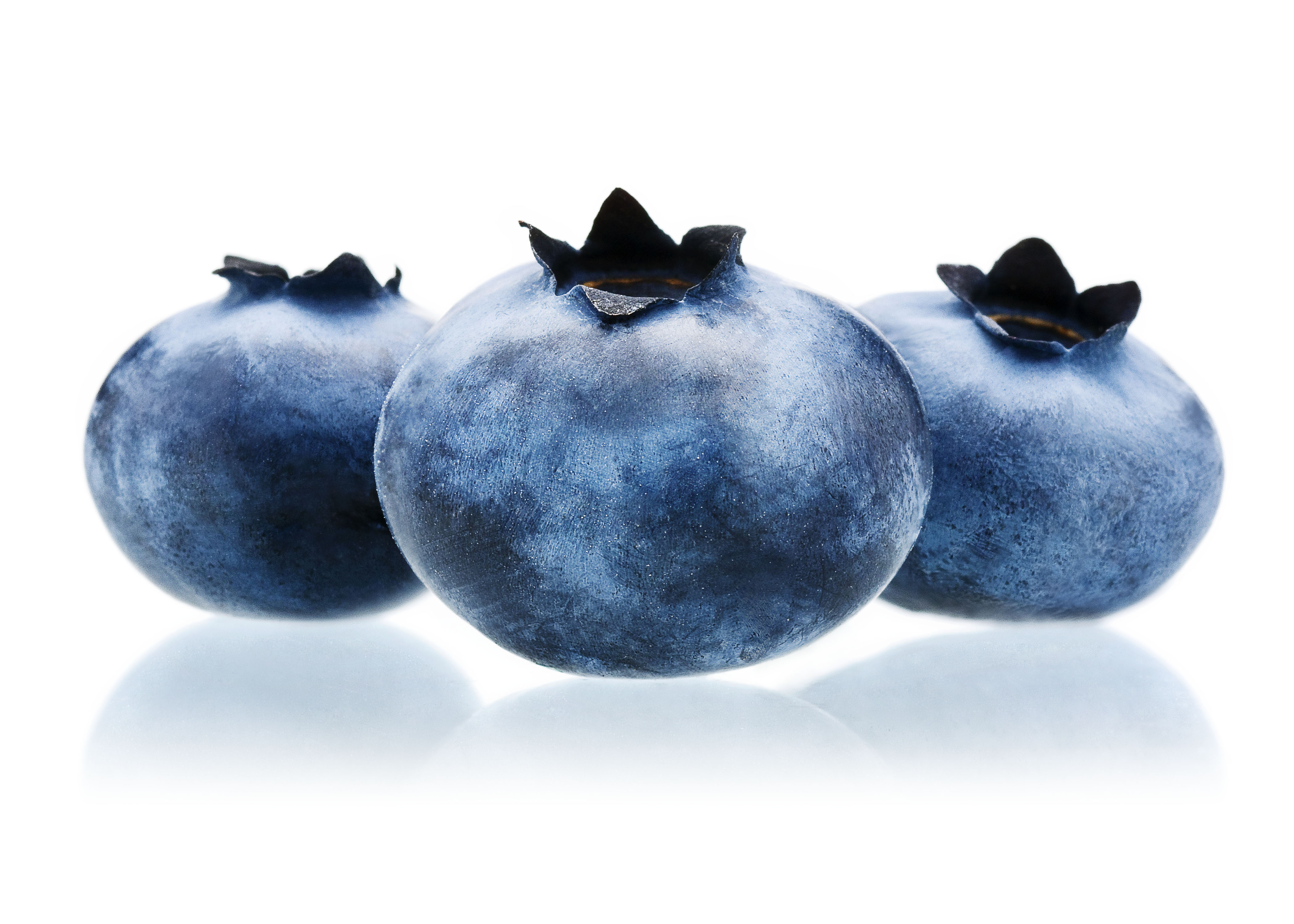 Blueberries_Dry